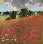 Poppies, Kent Downs