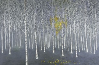 The Birch Wood
